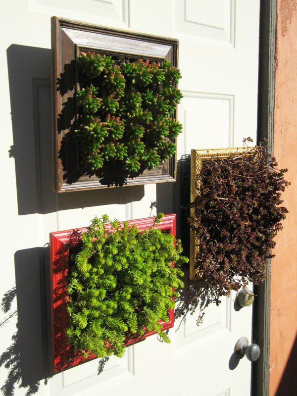 Vertical Planters from Repurposed Picture Frames | Landscape fabric ...