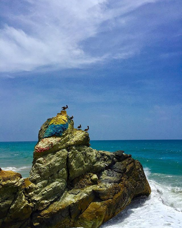 Pasión Tricolor, cielo, mar y aves #avenezuelavoy  #GoVenezuela  #neverstops  #ig_nature #ignation #ig_venezuelan_pro  #ig_fotogramers  #ig_latinoamerica_ #ig_ #instapic #instacool #instagood #instagram #instalike #likeforlike #like4like #life #summer #sun #sunset #nature #sky #gopro #4k #flower #repost #elnacionalweb