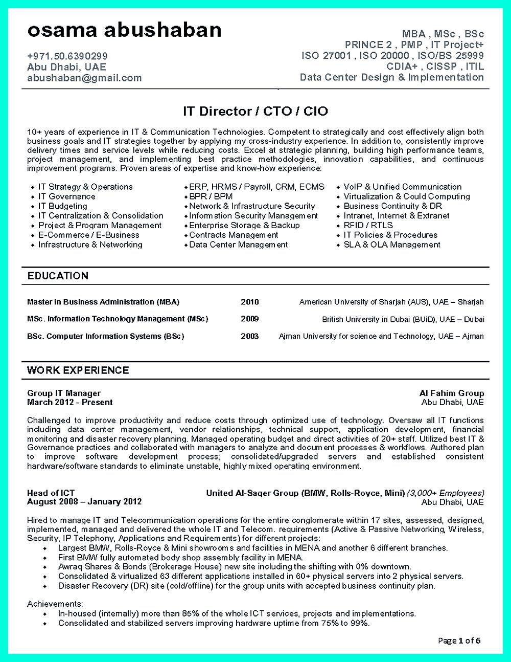 CTO resume or Chief Technical Officer Resume can be considered as ...