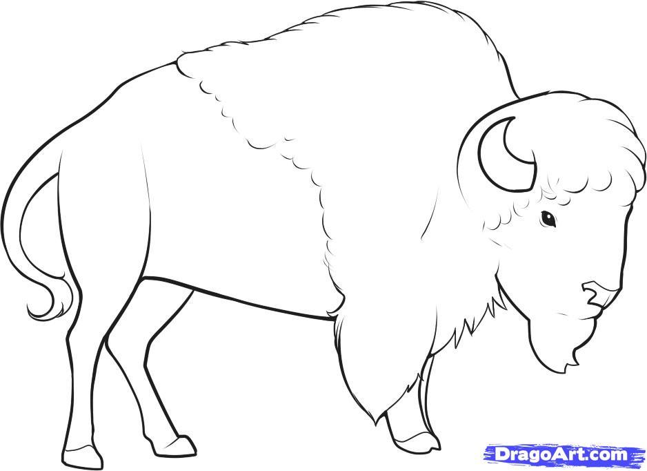 телескопические складные бизон картинки разукрасить животного шелковый путь имеет