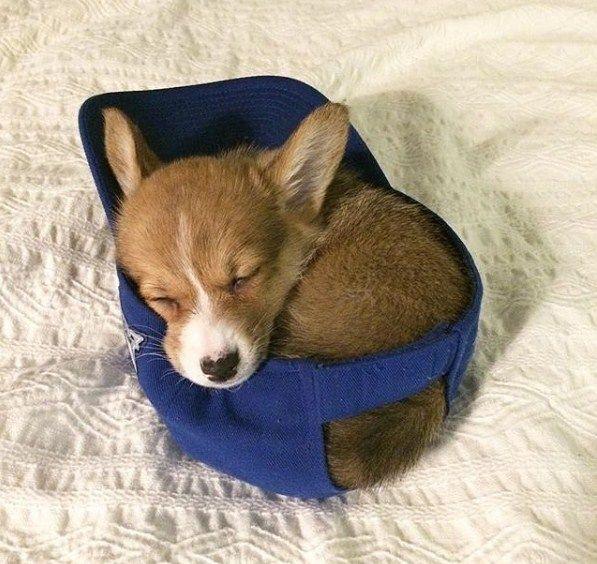 Hello Its Sleeping time http://ift.tt/2kApa6F