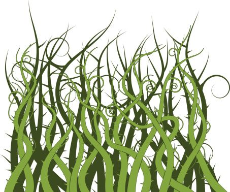 Image result for thorny shrubs fantasy