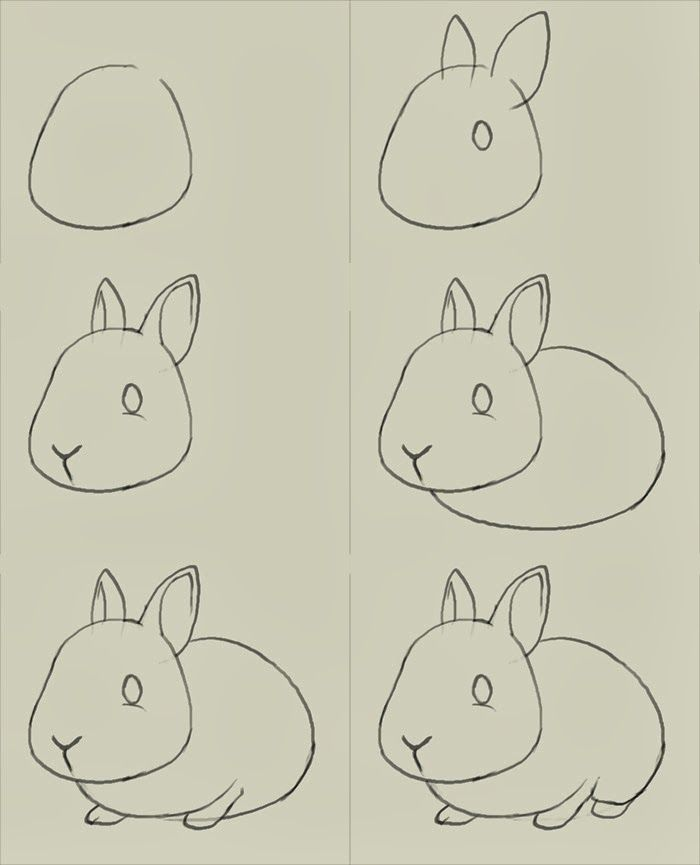How to draw bunny learn to draw a cute bunny step by step images along with