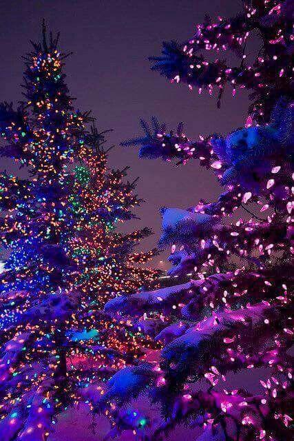Pin by leeann leal on Cute Christmas Pinterest Christmas