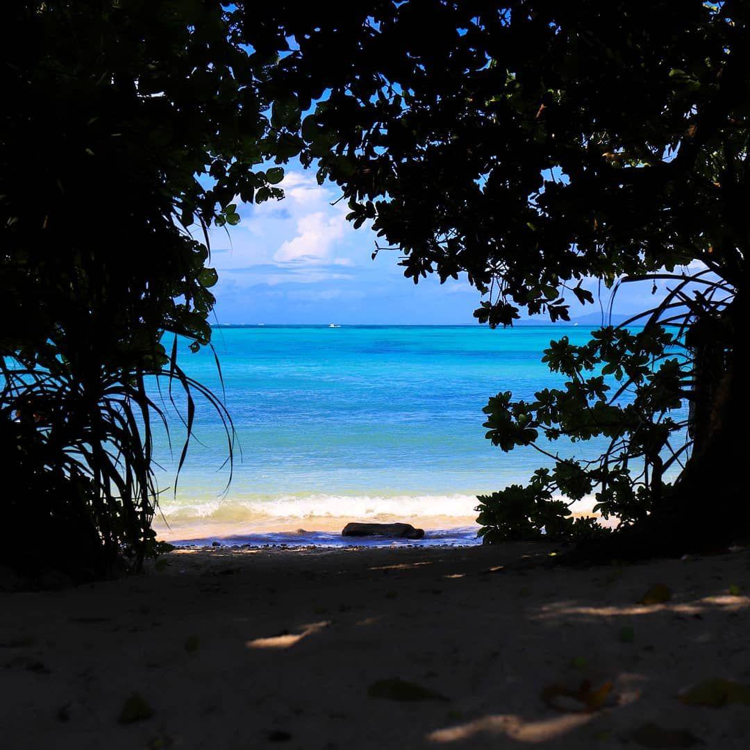 石垣島の思い出 星の砂で有名なカイジ浜 星の砂一個も見つけられ