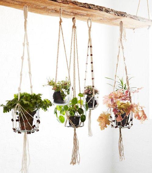 support pour plante en corde de jute
