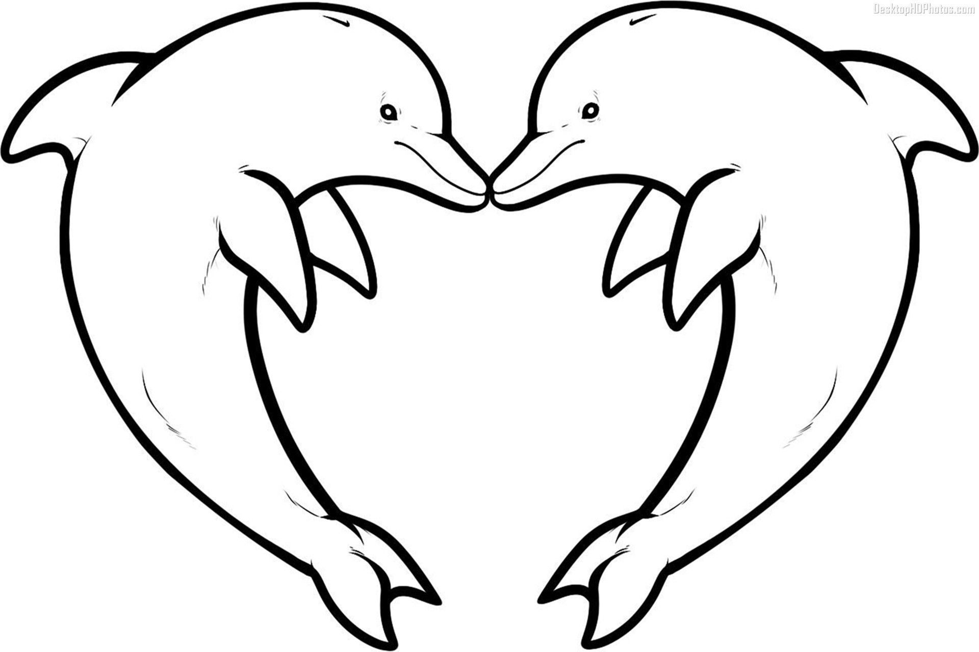 - Dolphin Coloring Pages Download And Print For Free Dolphin