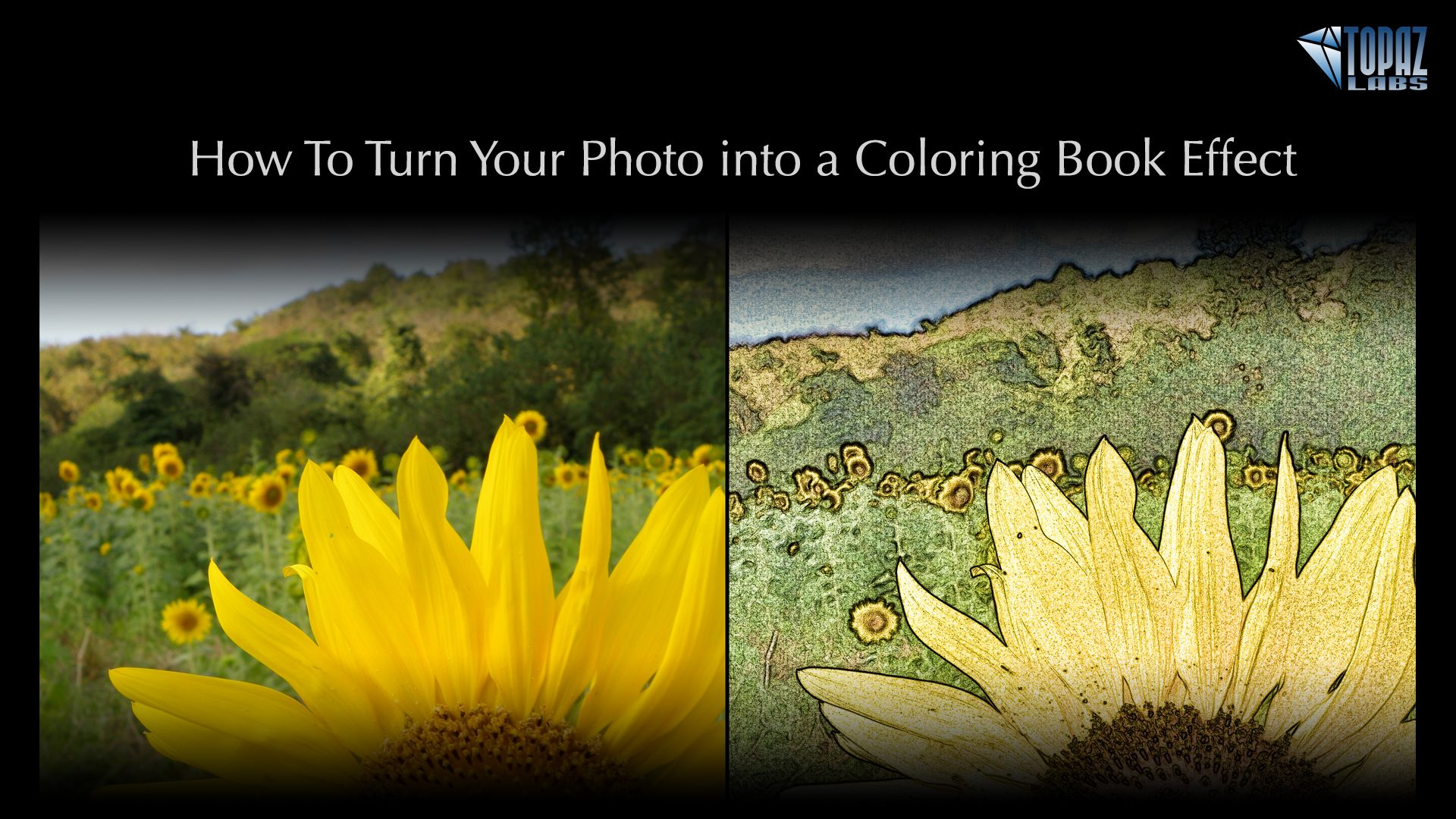 How To Turn Your Photo Into A Coloring Book Effect Topaz Labs Blog