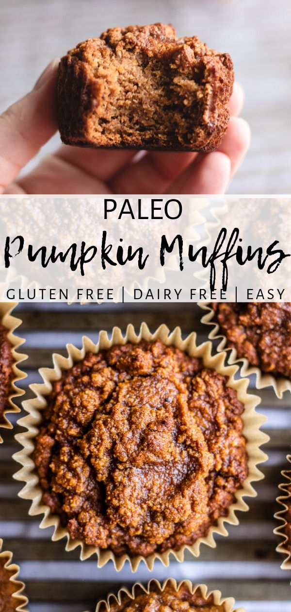 Classic Paleo Pumpkin Muffins (Sweetened with Honey) - Simply Jillicious #pumpkinmuffins