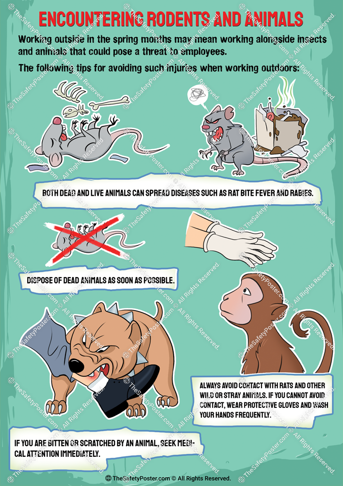 Encountering rodents and animals in 2020 Safety posters