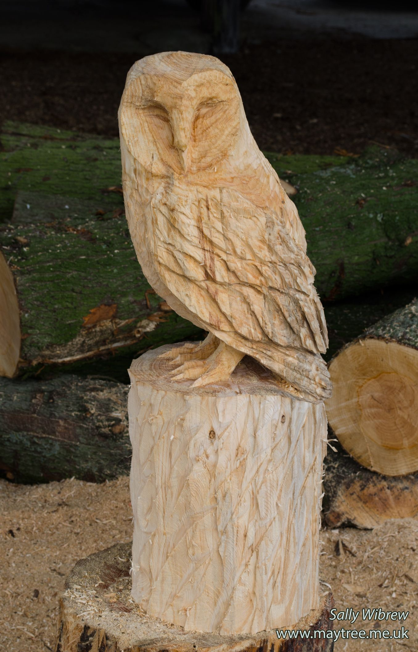 Working on another sleeping barn owl woodworking sculpture