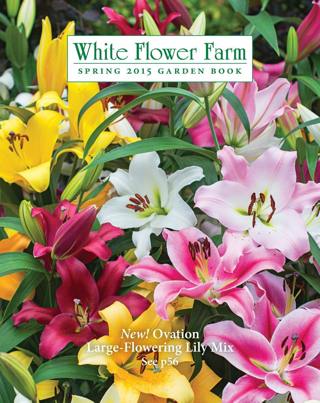 White flower farm catalogs for the garden pinterest white white flower farm catalogs mightylinksfo