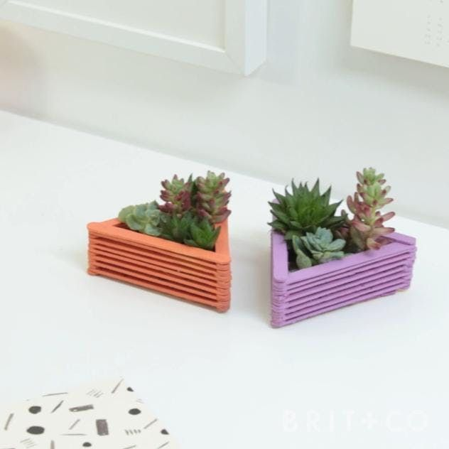 Photo of How to DIY Succulent Planters