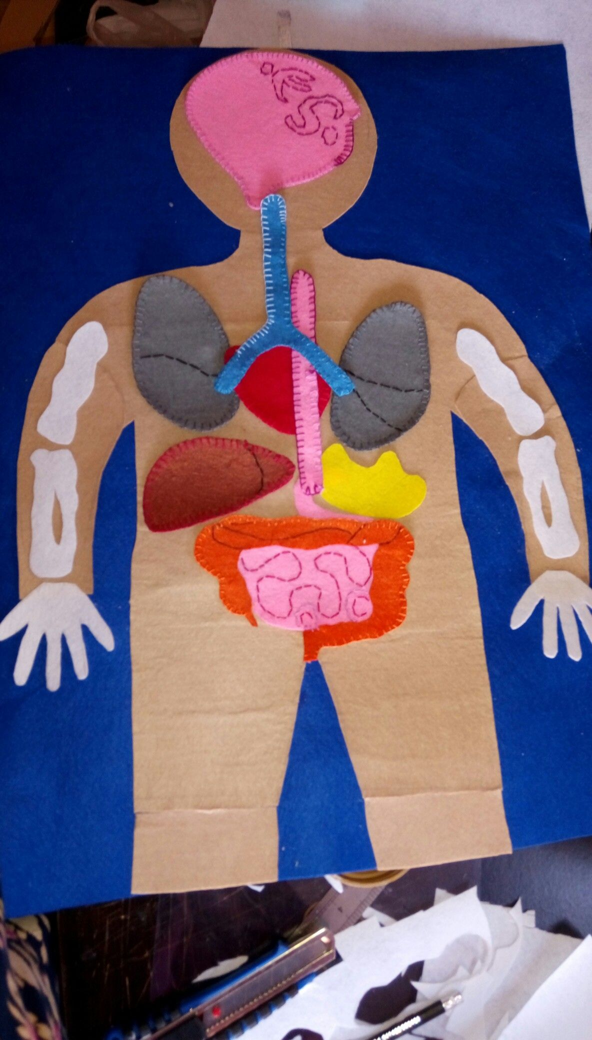 The Human Body Crafts For Kids Crafts Human Body