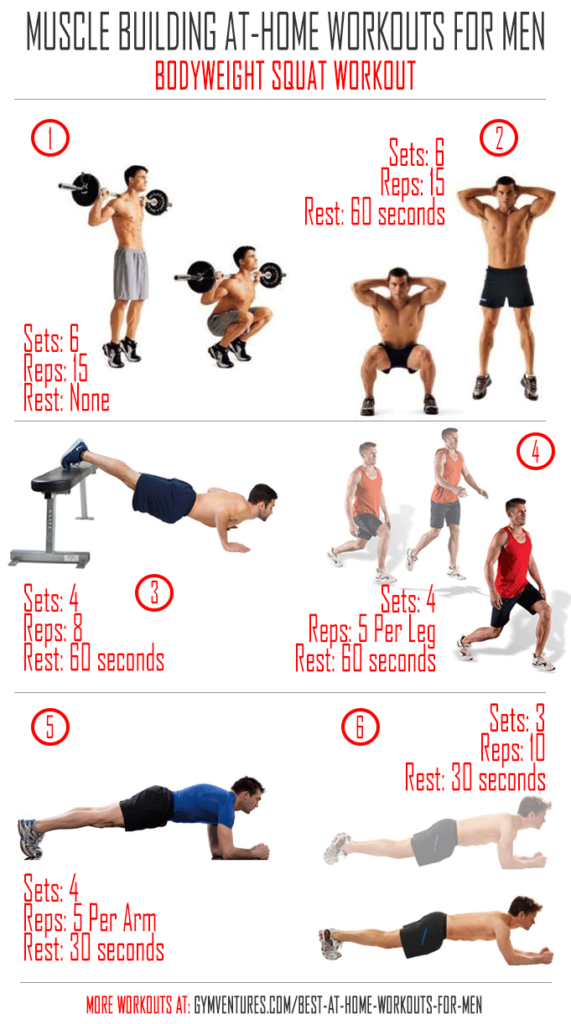 Muscle Building Workouts At Home For Beginners
