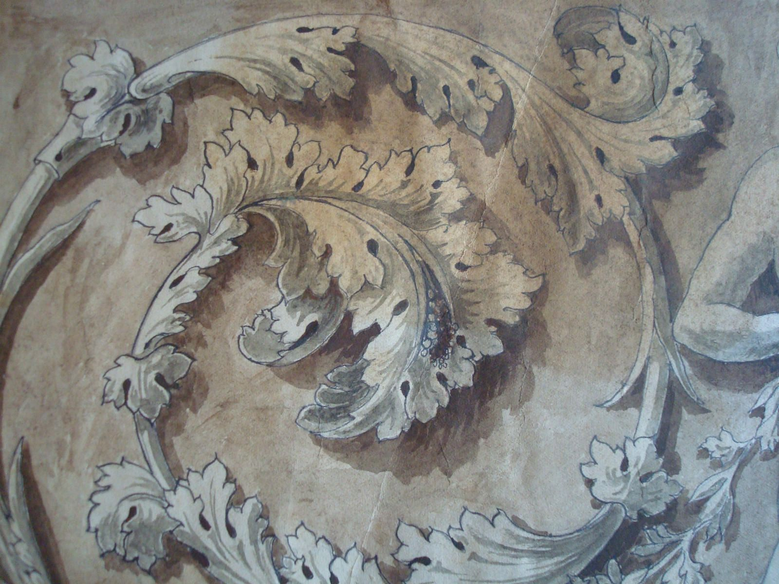 Acanthus freize