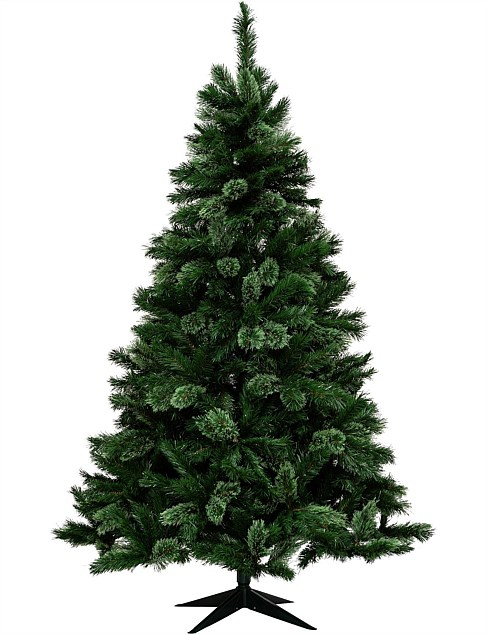 Get Your Home Ready For The Festive Season Shop A Wide Range Of Christmas Trees Christmas Dec Christmas Tree Shop Green Christmas Tree Christmas Trees Online