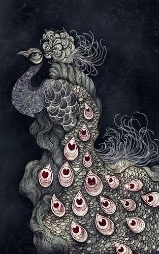 Fabulous Bird doodle/zentangle