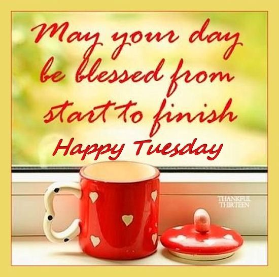 May Your Day Be Blessed Happy Tuesday Good Morning Quotes Happy Tuesday Morning Good Morning Tuesday