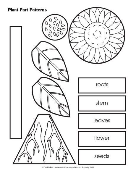 This resource could be incorporated into a plant unit in ...