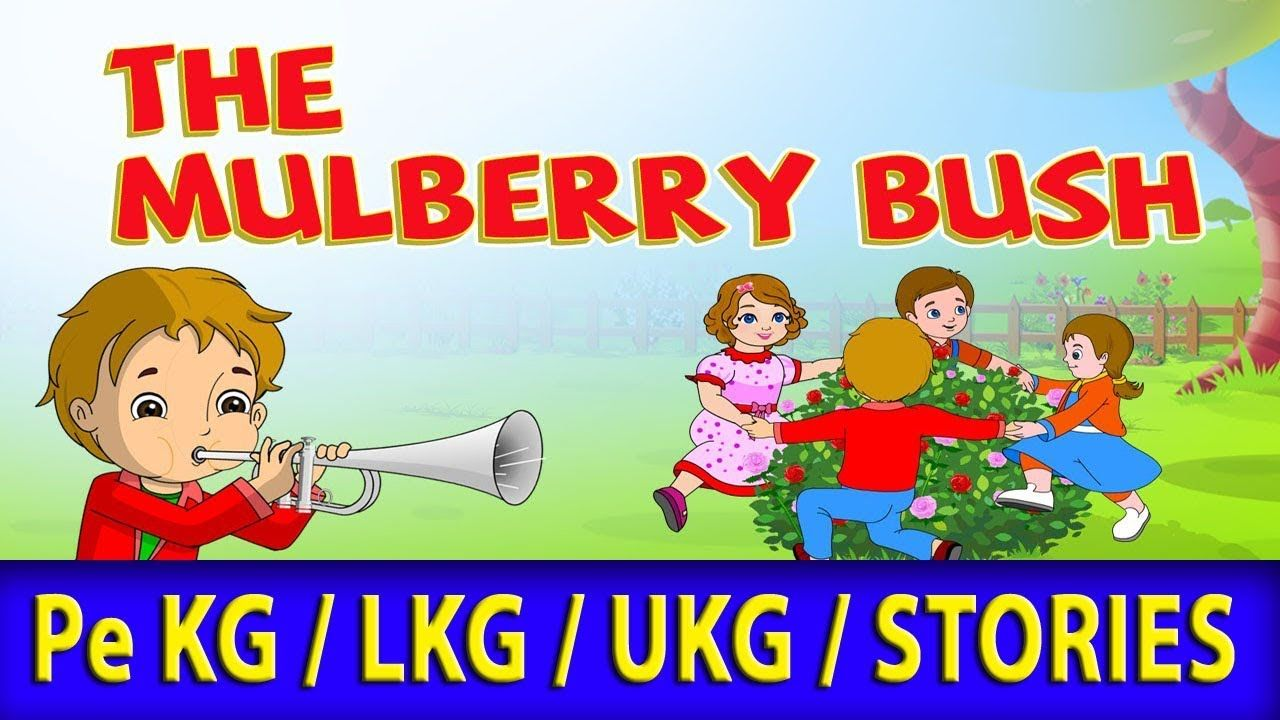 mulberry bush rhyme /Nursery Rhymes/ Pe KG / LKG / UKG