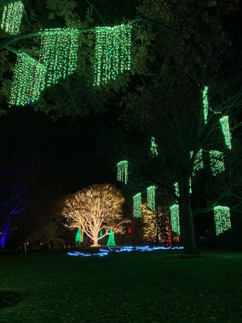 Newfields, Winterlights. Indianapolis Christmas Events