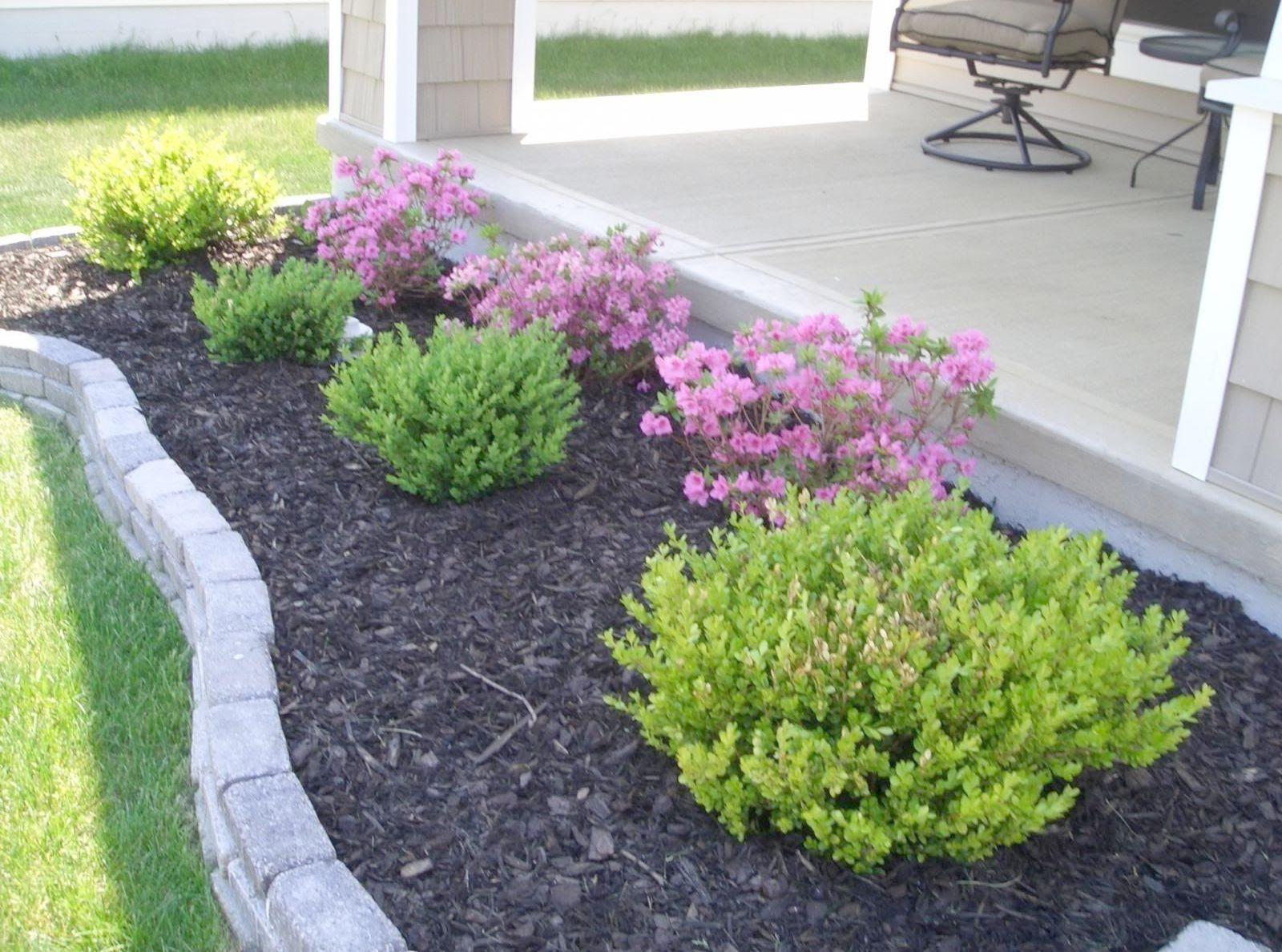 Pro Landscape Design Software Free Download Both Landscape Design Ideas Pictures Beneath La Small Front Yard Landscaping Easy Landscaping Beginners Landscaping