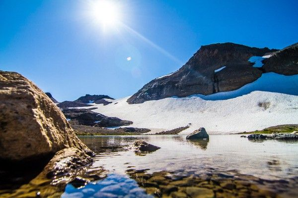 Five Hikes in Mount Rainier National Park - REI Blog