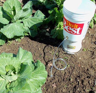 www.Bucket Irrigation.com