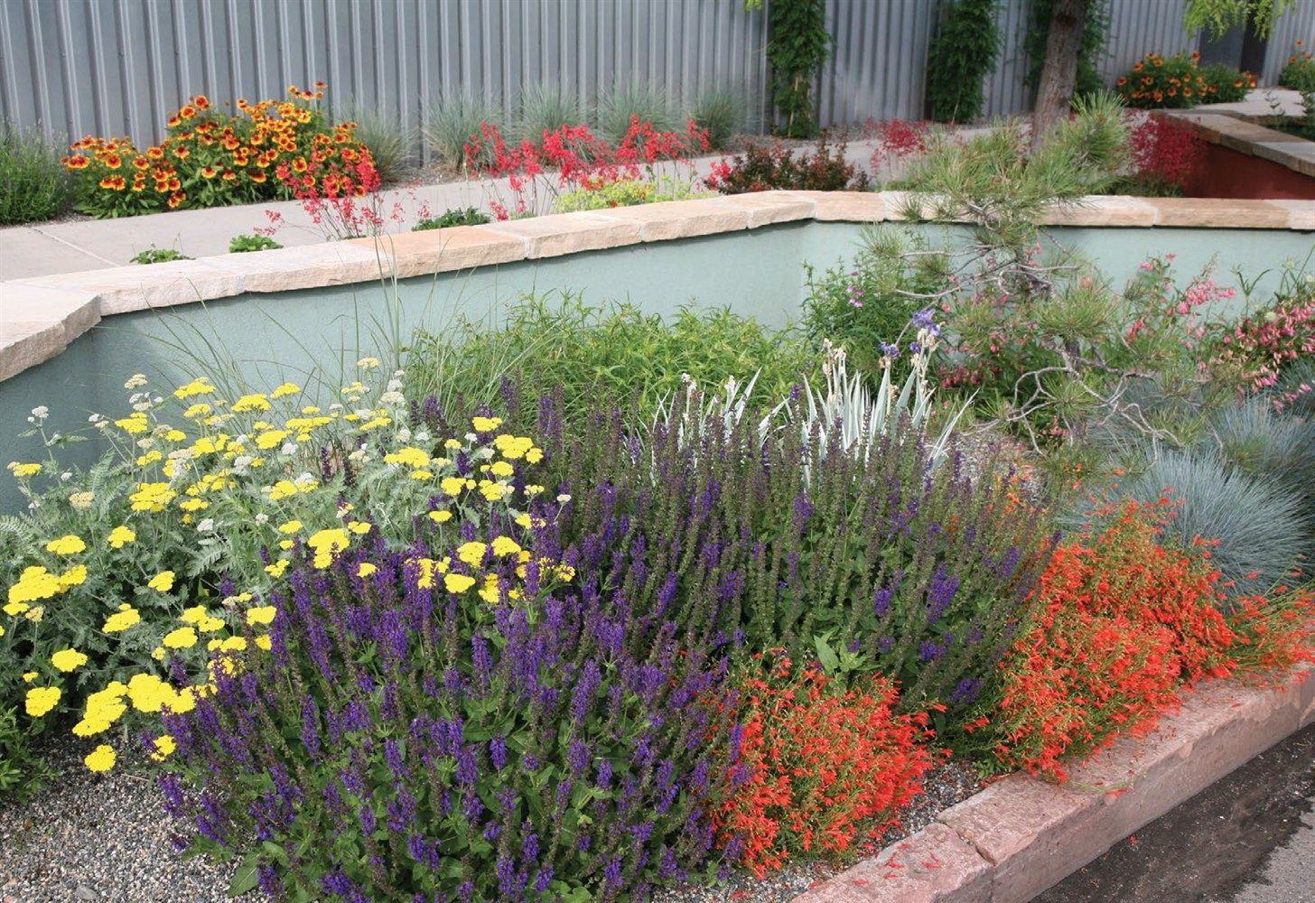 The Award Winning Display Garden At LifescapeAssociates In Denver Shows  Just How Colorful AXeriscape Installation Can Be.