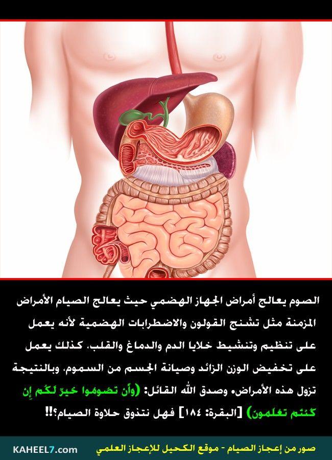 14 7 Jpg 650 900 Ramadan Arabi Medical