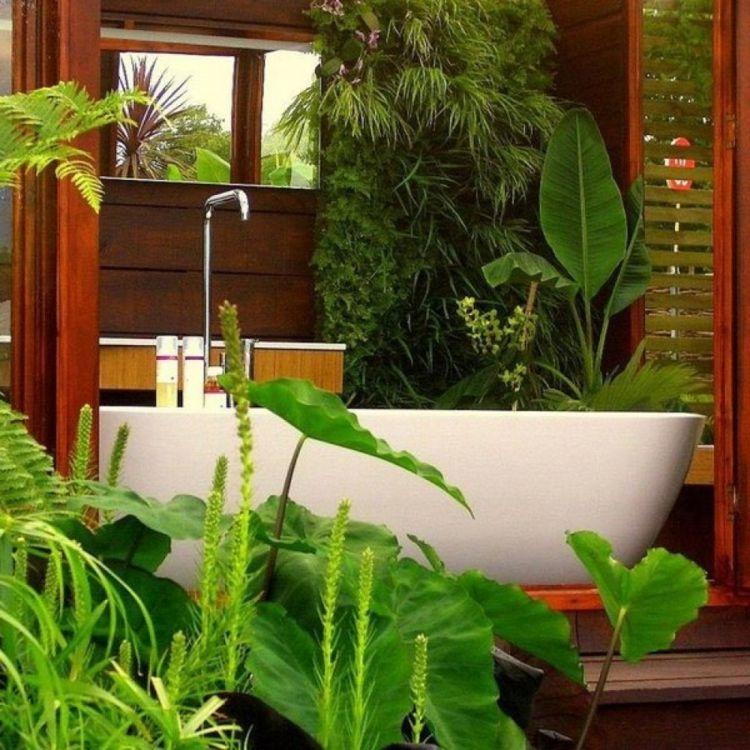 pflanzen fürs bad ficus-schwertfarn-pfeilblatt-badewanne - schlafzimmer pflanzen