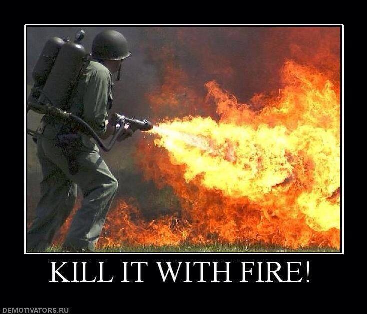 Kill It With Fire Kill It With Fire Fire Image Image