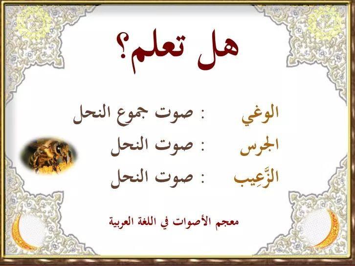 Pin By Saeed On لغة الضاد لغتي Arabic Language Beautiful Arabic Words Learning Arabic