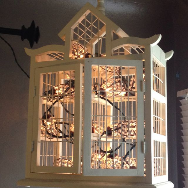 Rose String Lights Target : String of lights inside of a decorative bird cage. Makes a cute hanging lamp.