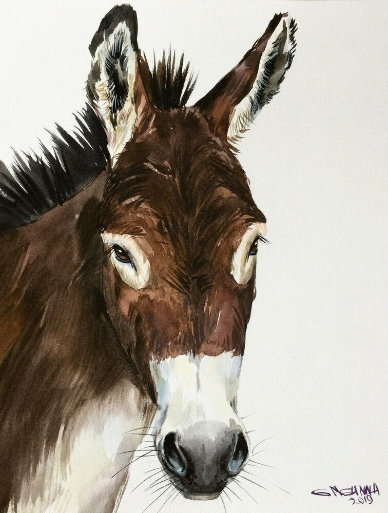 10X8,DONKEY PORTRAIT, FARM ANIMAL ART, HORSE ART ,ORIGINAL WATERCOLOR PAINTING #…
