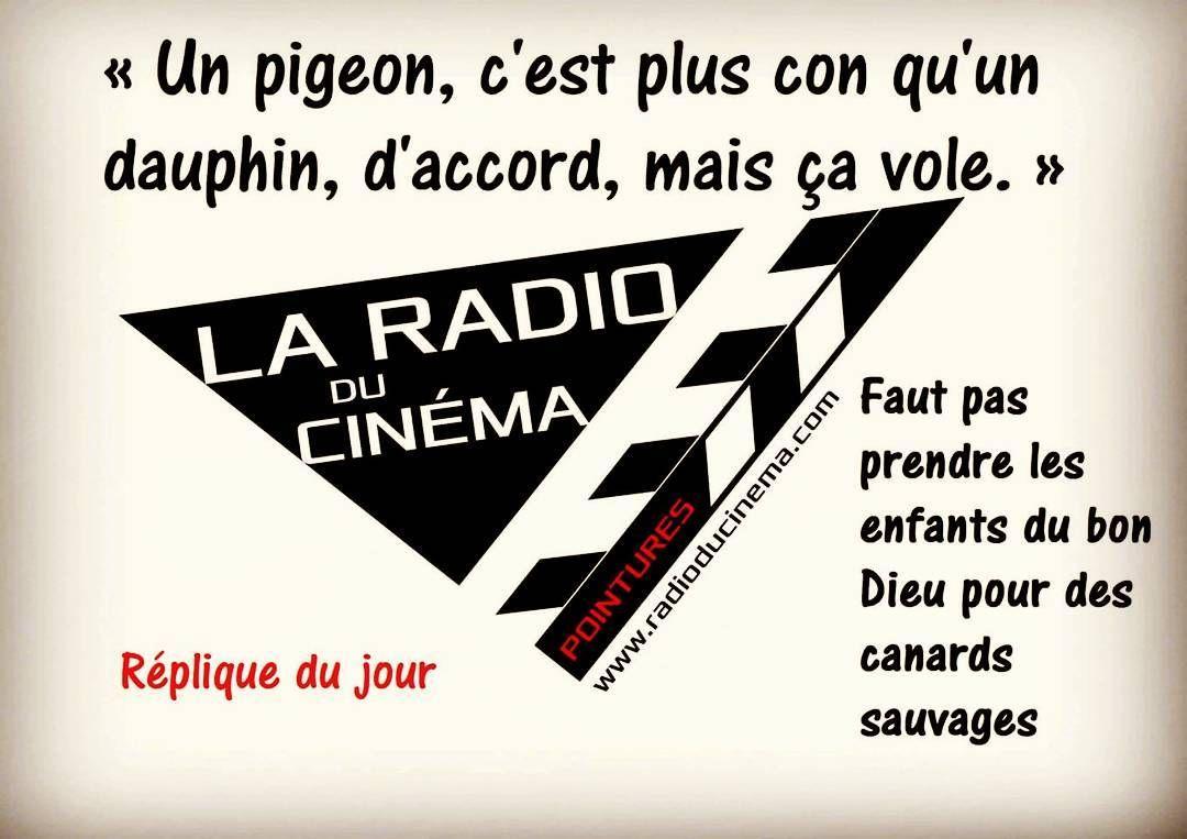 Untitled Cinema Dauphin Pigeon