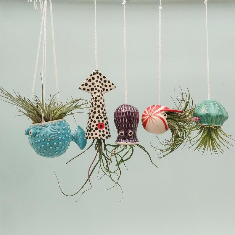 Small Collection of 5, Octopus Garden, Hanging Air Plant Holders, Squid, Octopus, Jellyfish, Puffer Fish, Nautilus