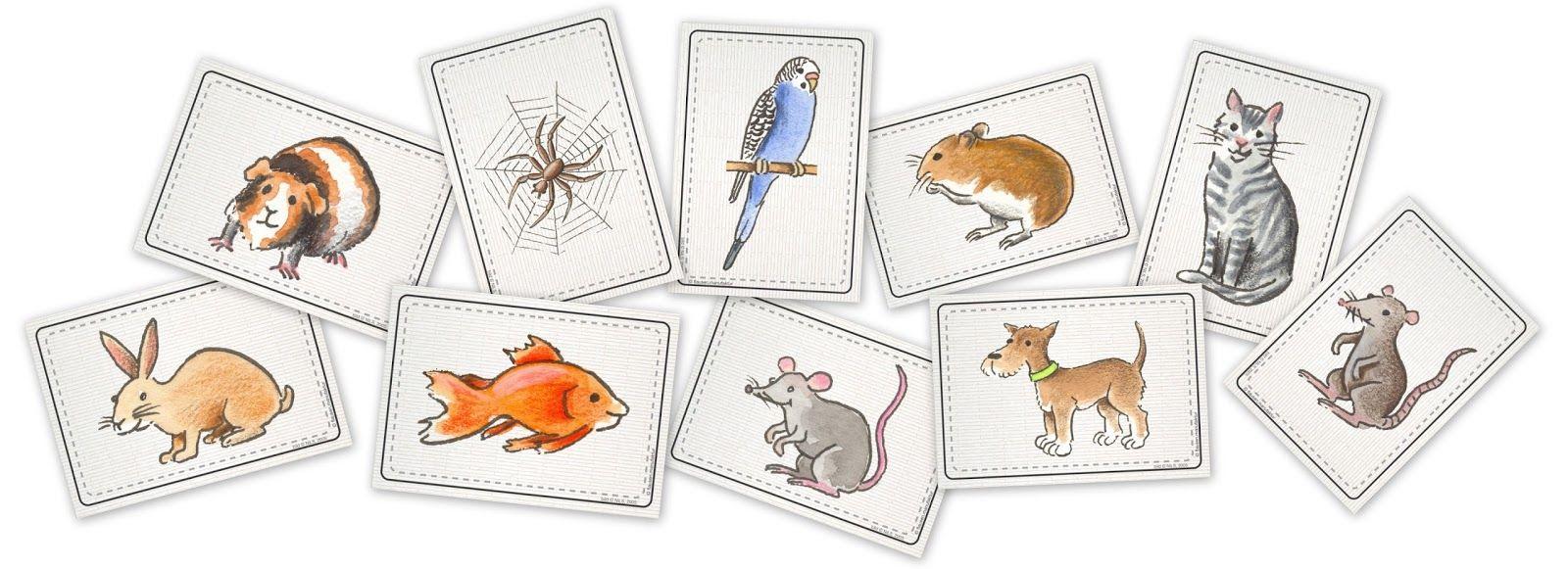 flashcards 'pets' | flausen.manufaktur