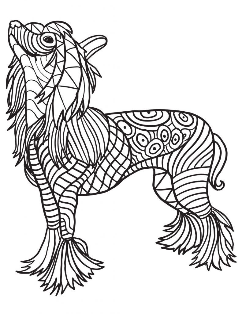 Chinese New Year Year Of The Dog Printable Coloring Pages Coloring Pages New Year Coloring Pages Animal Coloring Pages
