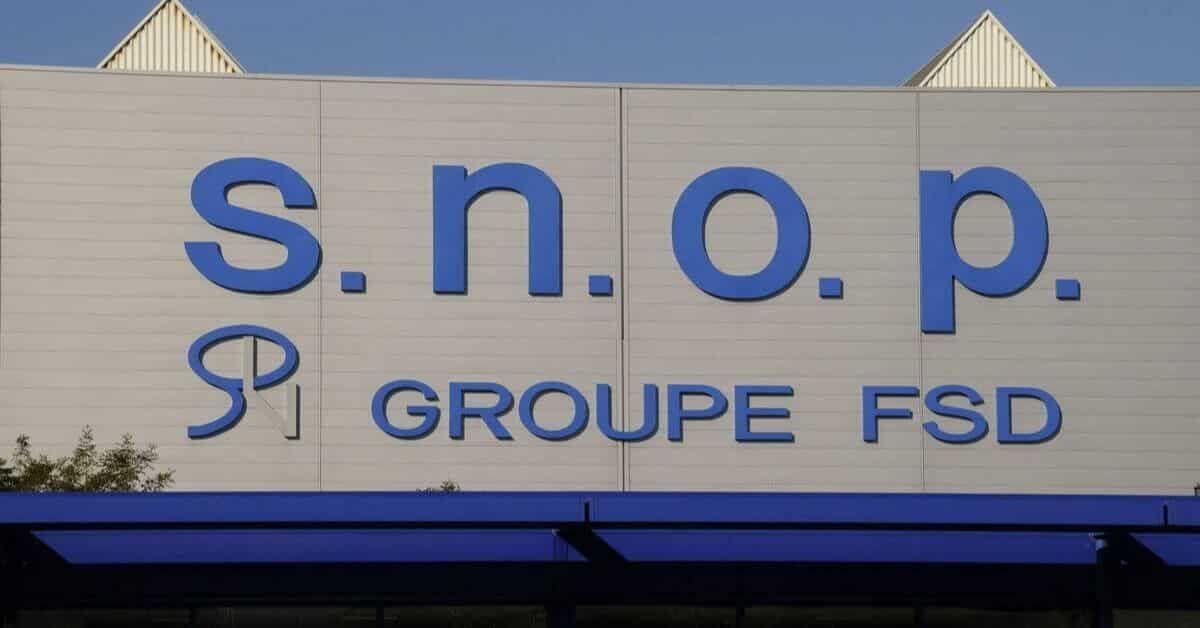 Snop Recrute Ingenieur Qualite Et Charge Qualite Profils Debutants Dimajob Fsd Accounting Nintendo Wii Logo