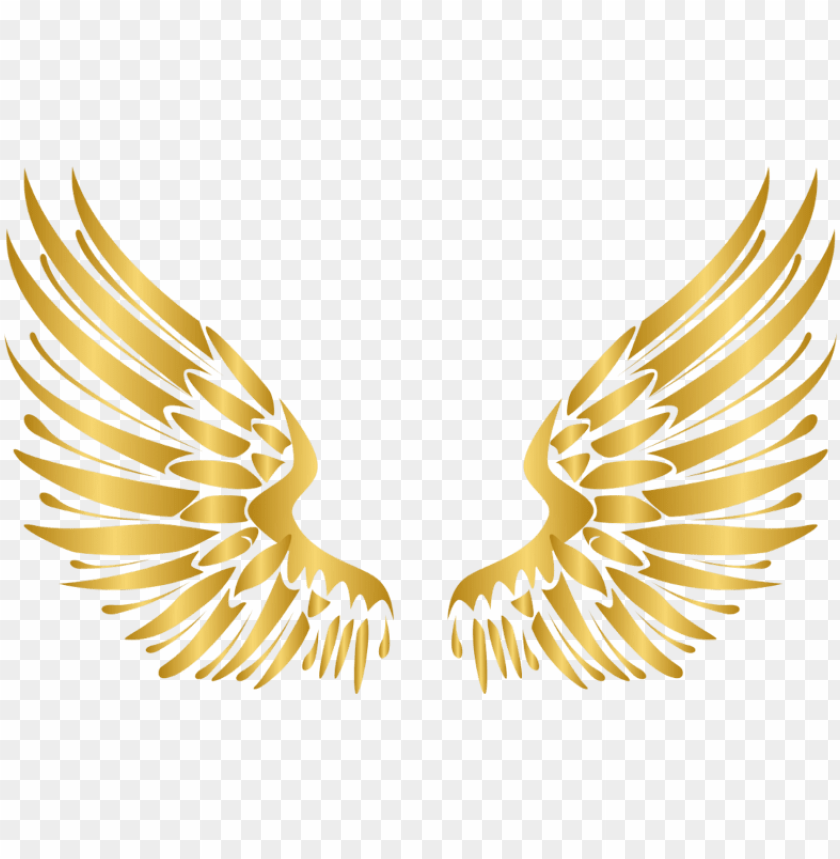 Wings Gold Wing Angel Angels Angelwings Angelwing Golde Transparent Wings Vector Png Image With Transparent Background Png Free Png Images Wings Icon Logo Design Art Dragon Artwork Fantasy