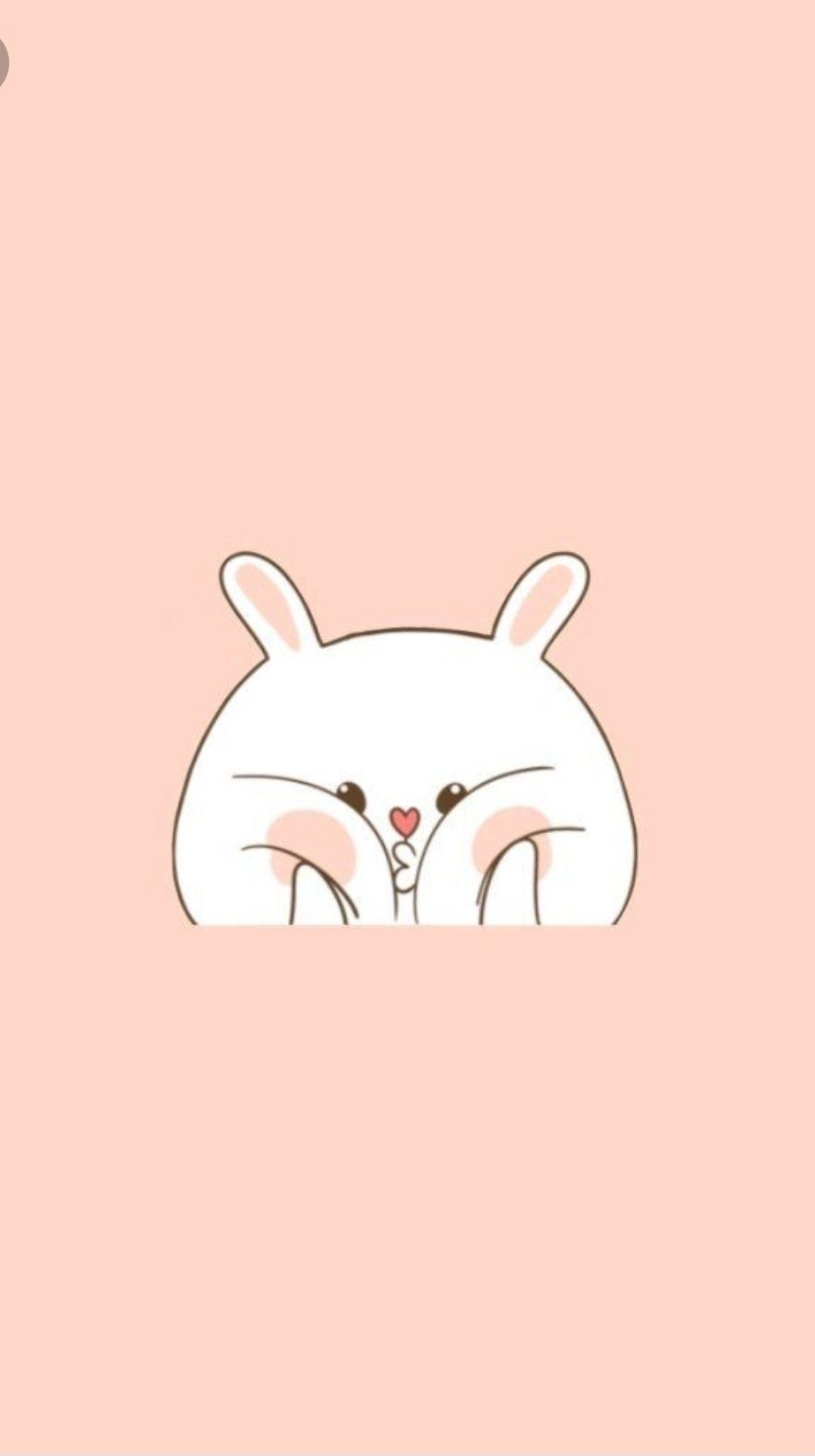 Cute Kawaii Pink Background With Squishy Bunny In 2019 Intended For Cartoon Kawaii Wallpapers In 2020 Cute Cartoon Wallpapers Cute Wallpapers