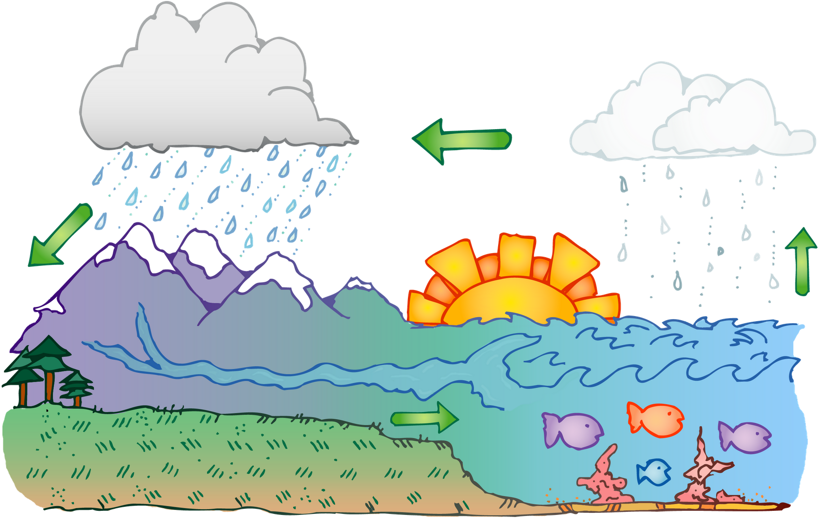 DJI_Earth_watercycle_c.png (1600×1011)   Water cycle ...