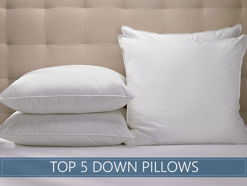 5 Highest Rated Down Pillows For November 2020 Reviews Ratings Best Down Pillows Down Pillows Best Bed Pillows