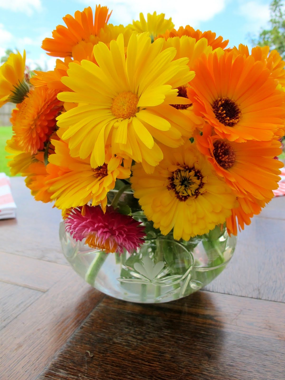 Cute For A Center Piece Crafty Pinterest Marigold Flowers And