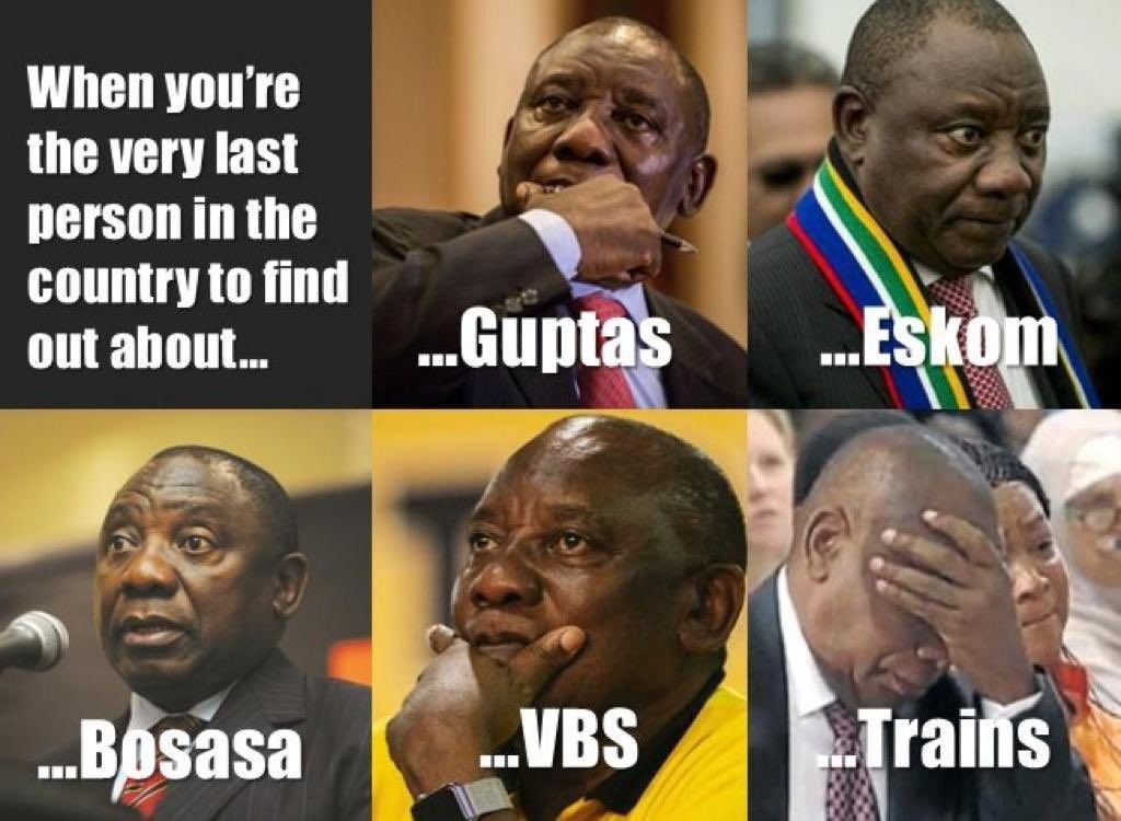 Pin by siya on South African Memes (With images) African