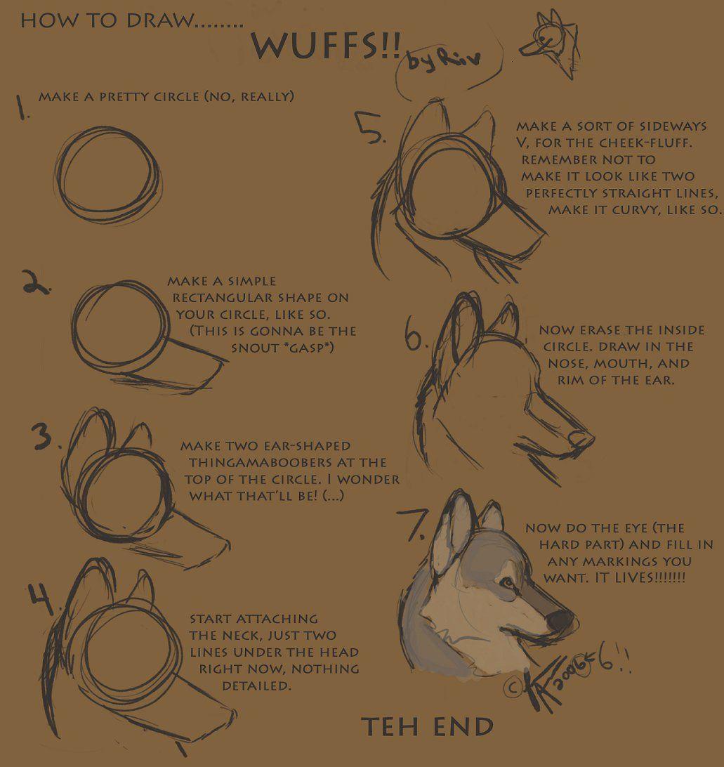 12+ Wolf tutorial info