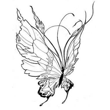 Aile De Papillon Dessin tatouage papillon ailes grandes | tattoos | tattoos, butterfly