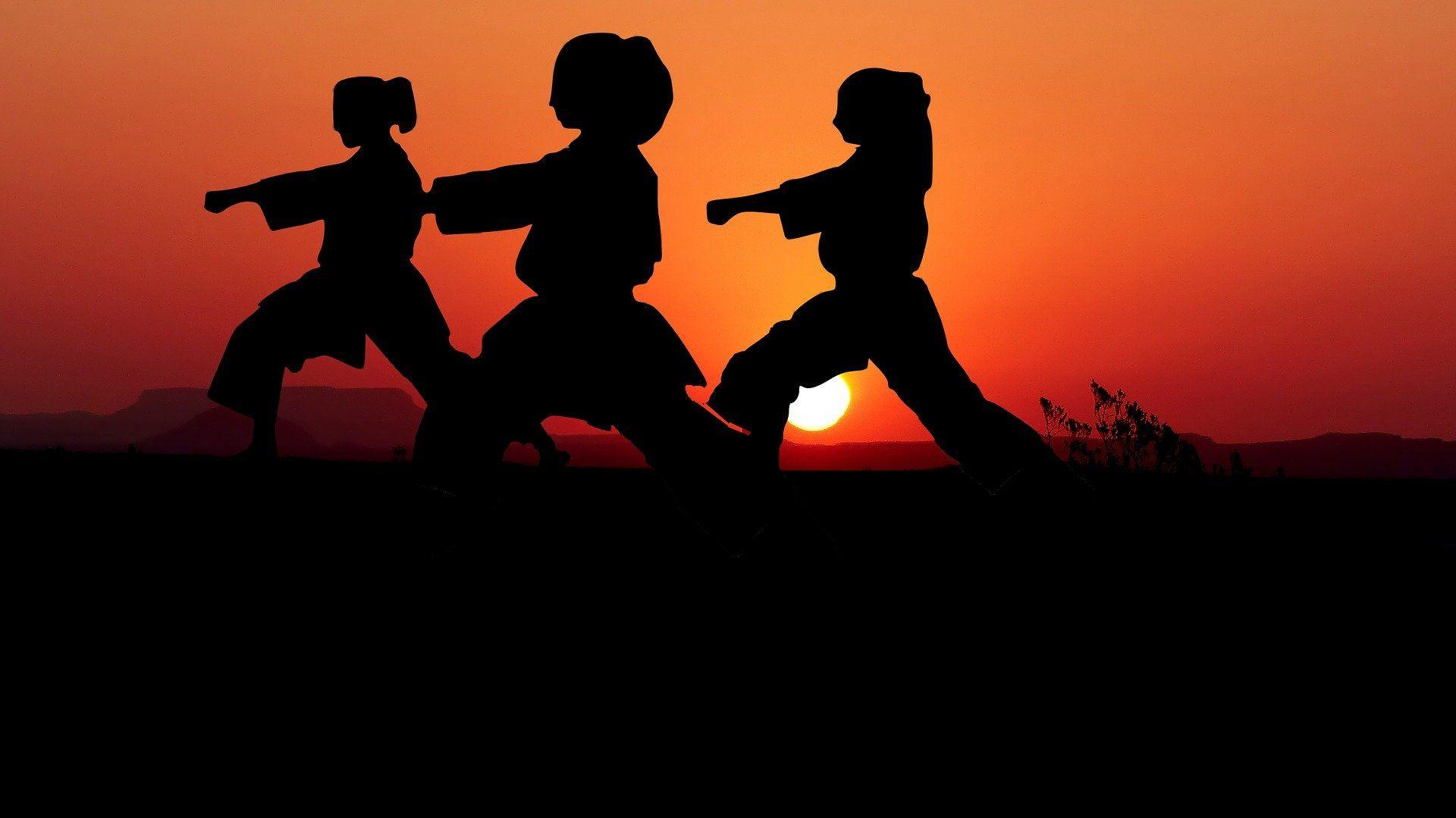 ما تفسير حلم شخص يدافع عني في المنام للعزباء Karate Classes Karate Karate Kata